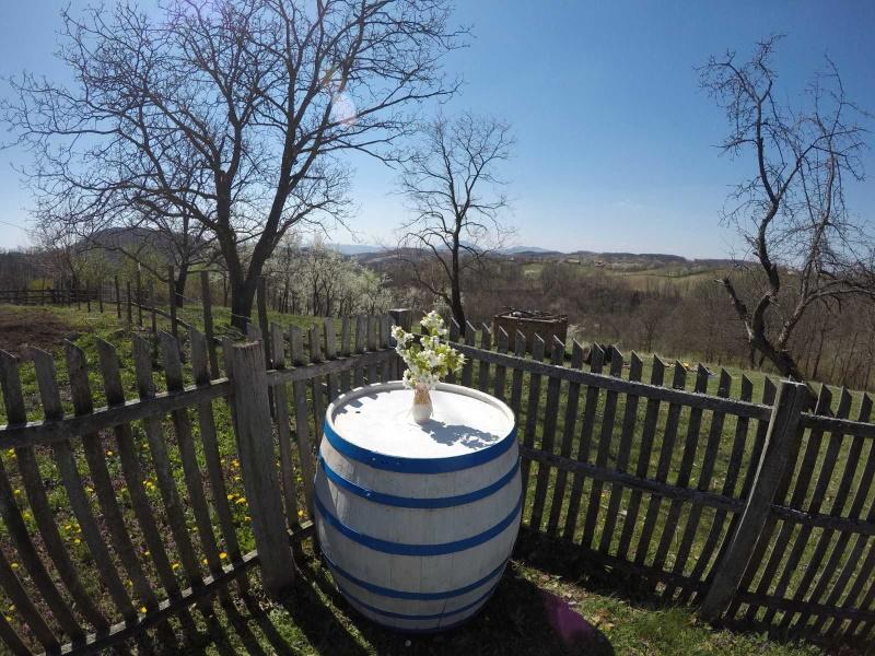 Pogled iz dvorišta