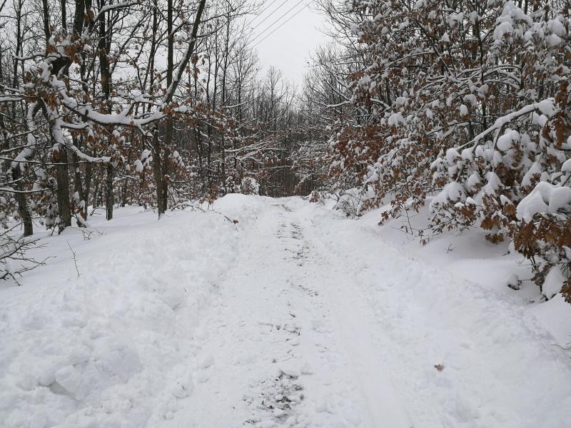 Put u Pajoviće zimi